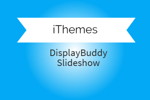 DisplayBuddy Slideshow