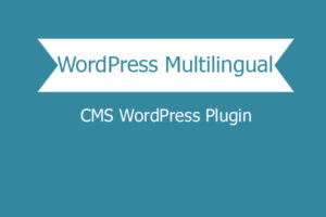 Wordpress Multilingual Cms WordPress Plugin