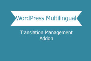 Wordpress Multilingual Translation Management Addon