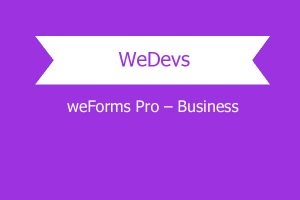 Weforms Pro – Business Copy