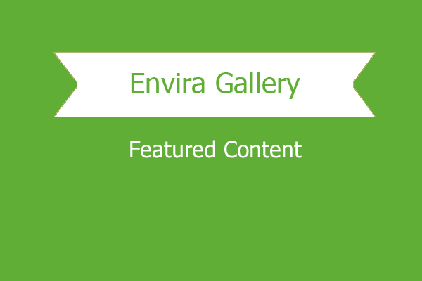Envira Gallery Featured Content Addon