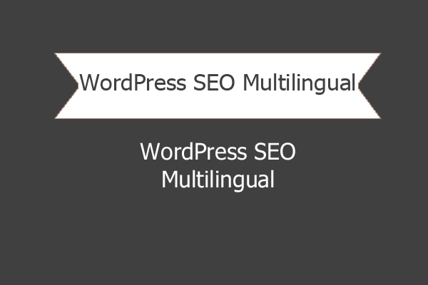 Wordpress Seo Multilingual