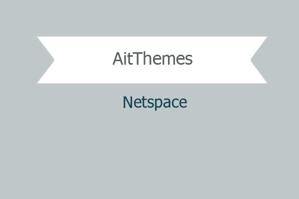 Netspace 1.png