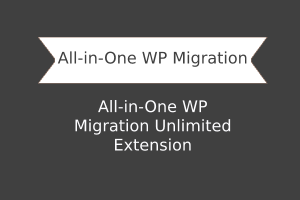 All in One WP Migration Unlimited Extension Other Plugins 1